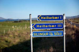 Á Heiðarbæ I er oft Þingvallasilungur á boðstólum – en líka kjúklingur og lambakjöt, því þar er blandaður búskapur.